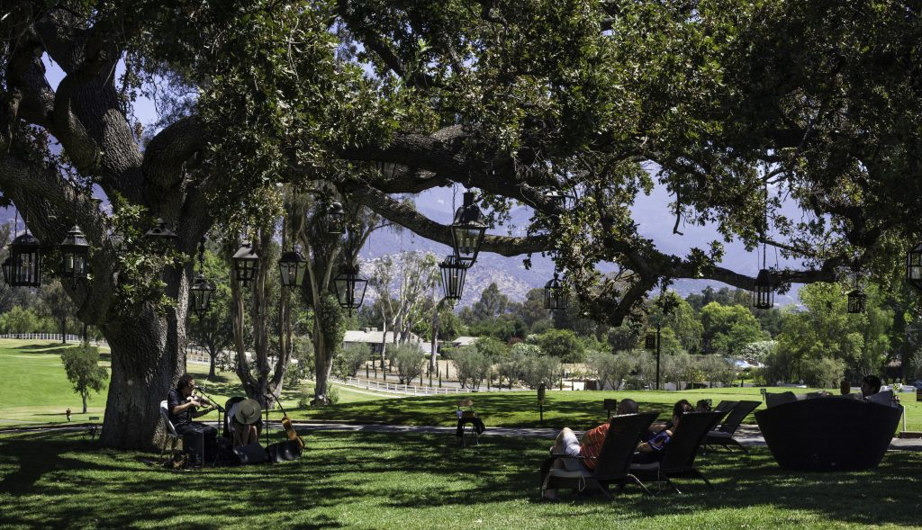 Ojai Valley Inn-Sunday acoustic guitar on the golf course